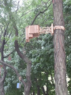 Гнездо в виде флейты Пана