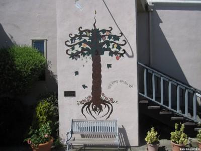 Во дворе синагоги