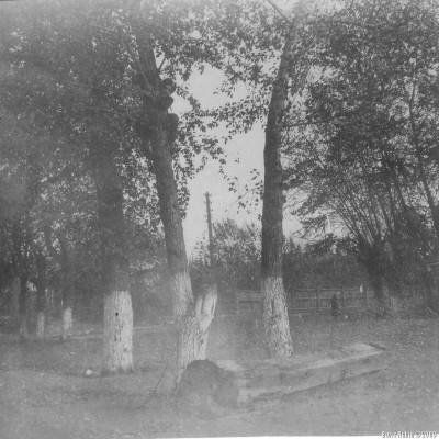 Вдали на углу улиц Революции и Рабочей виден забор, которым был огорожен особняк Кулагина. А я сижу на дереве с двойным стволом.