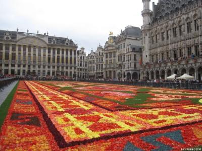 Цветочный ковер на главной площади Брюсселя