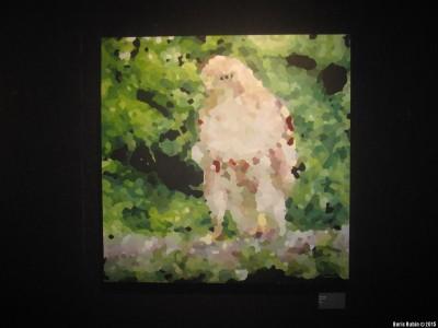 Hawk by Anya Rubin