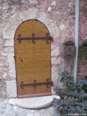 Дверь с коваными петлями