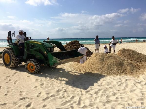 Финальный этап уборки водорослей с пляжа