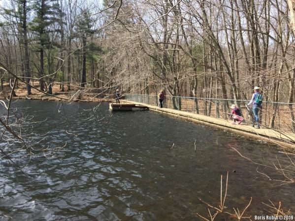 Дамба на Steichen's Pond